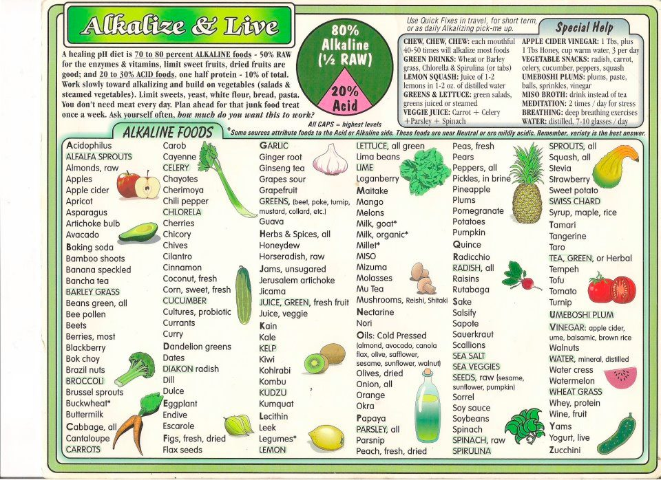 Diet Chart Pdf  Vegetable Lasagna Healthy