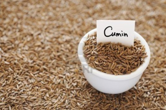 15535479-dried-cumin-in-a-white-ceramic-bowl