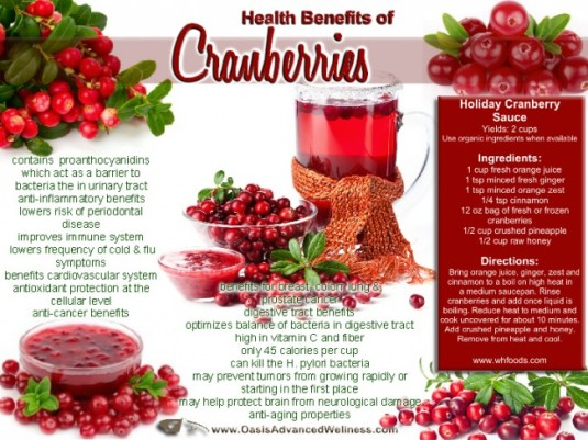 cranberries-health-benefits-blog-534942_650x488
