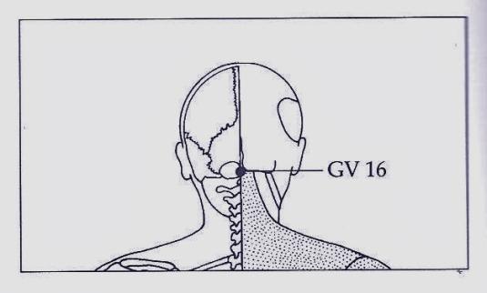 GV-16