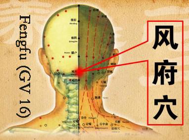 slika-3-fengfu